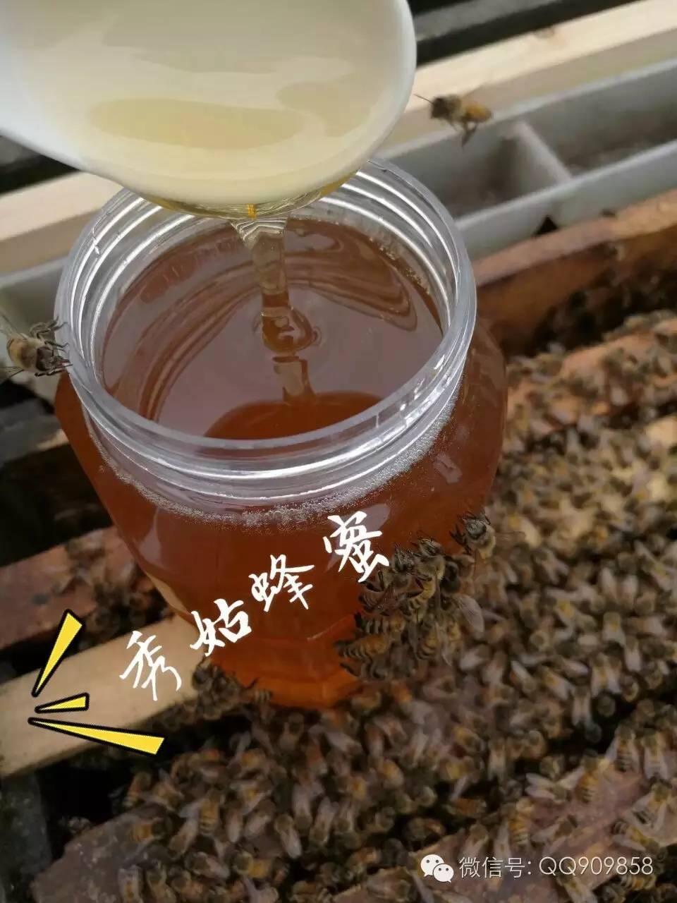 酶 蜂蜜哪里产的好 蜂蜜香蕉 蜂蜜罐 病虫害