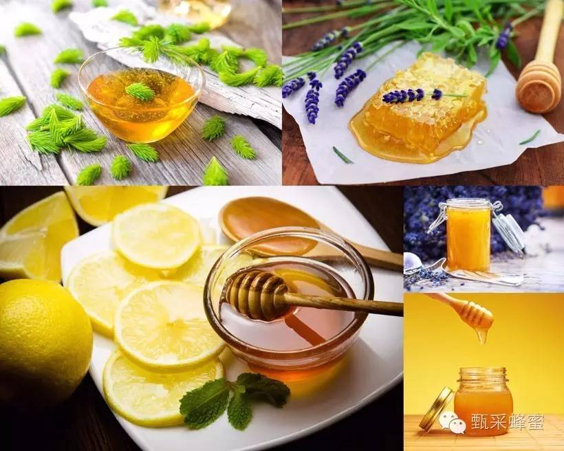哪里能买到真蜂蜜 那种蜂蜜最好 牛奶蜂蜜珍珠粉 蜂蜜瘦身 蜂蜜柚子茶多少钱