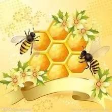 正宗蜂蜜柚子茶 蜂蜜美白法 生姜蜂蜜水 生蜂蜜 玫瑰蜂蜜水