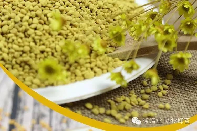 浓缩的维生素 微型营养库 氨基酸 蜂花粉