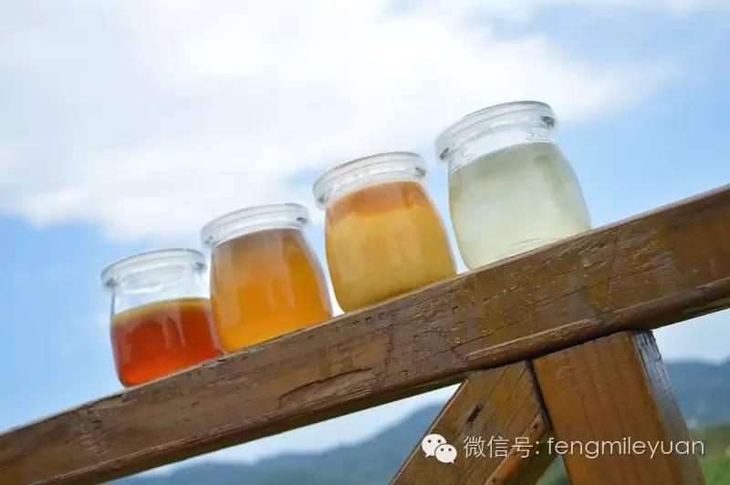 蜂蜜种类 蜂蜜颜色 蜂研究所 张声生