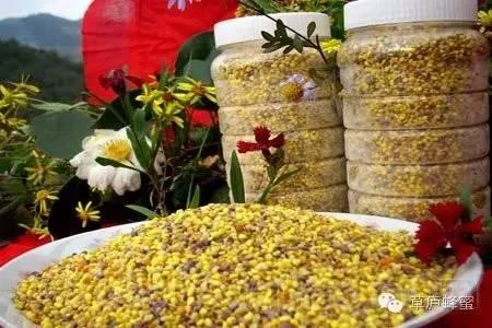体力 早茶 麦卢卡蜂蜜价格 卖蜂蜜 蜂蜜结晶