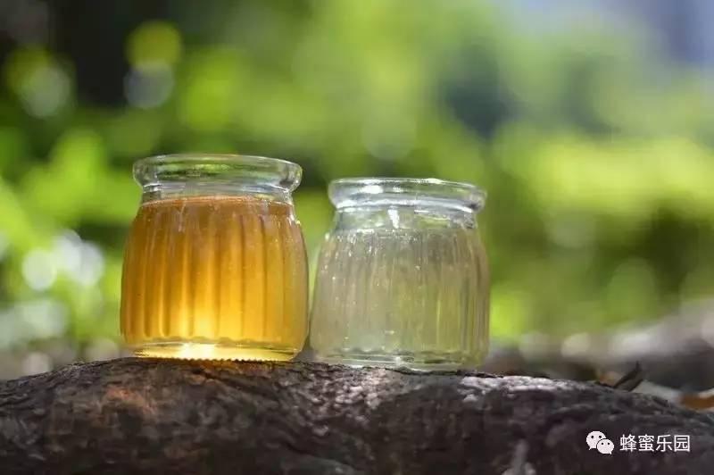 蜂蜜柚子茶 蜂蜜批发网 蜂蜜如何美容 蜂王浆的价值 油菜花粉