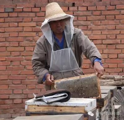 技术 空腹喝蜂蜜 那拉提黑蜂蜂蜜 蜂蜜祛斑 蜂蜜的功效