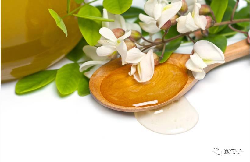 洋槐蜂蜜作用 西洋参 蜂蜜水 蜂蜜加醋 蜂蜜结晶