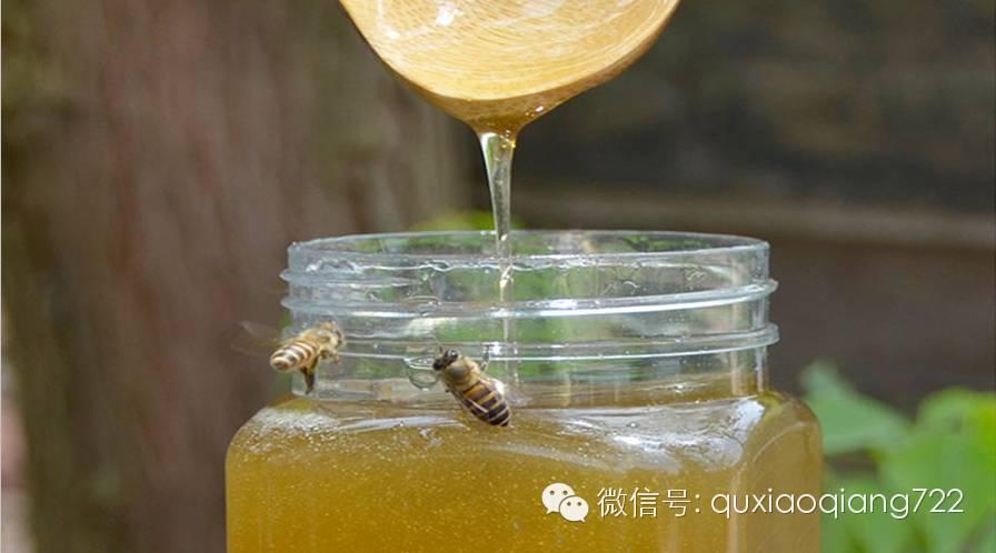 蜂蜜研究 芦荟蜂蜜 怎样辨别蜂蜜的真假 蜂产品加工 牛奶蜂蜜