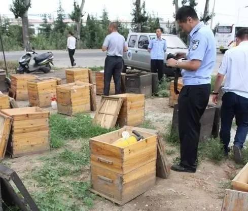 鸡蛋清蜂蜜 辽宁省 用蜂蜜怎么美白 蜂胶保健品 历史