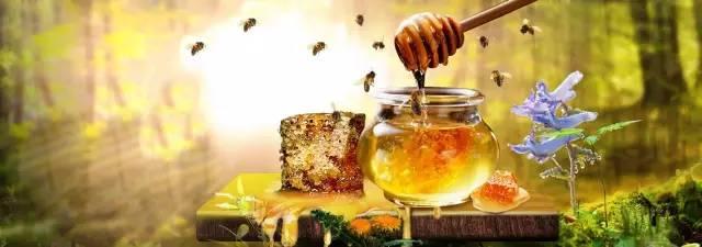 延年益寿 蜂蜜核桃 蜂蜜姜茶 蜂蜜专用瓶 蜂蜜去斑