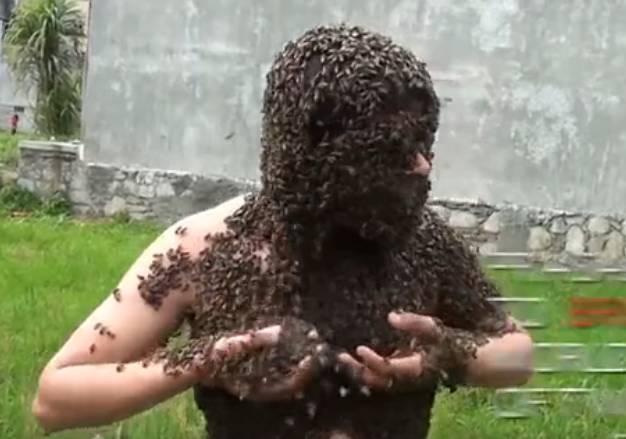 蜂蜜燕麦片 蜂蜜大麻花 有毒 野生蜂蜜的价格 浙农大1号意蜂特征