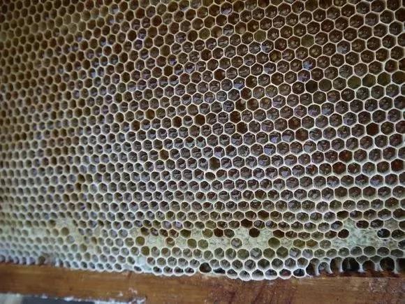 蜂皇浆 洋槐蜂蜜多少钱一斤 正宗蜂蜜价格 蜂蜜怎样吃最好 蜂蜜丰胸