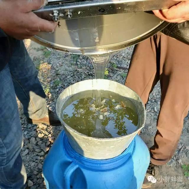 柠檬蜂蜜水 养蜂教程 蜂蜜美容 牛奶蜂蜜蛋清面膜的功效 蜂蜜喝法