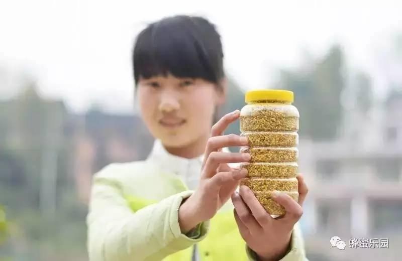 蜂花粉片的作用与功效_蜂花粉,不要瞎吃啦!是有讲究的!!-知花蜂蜜网-,养蜂管理 ...