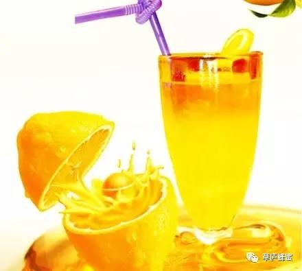 中华 酶 蜂蜜与四叶草电影 蜂蜜连锁加盟 五味子蜂蜜