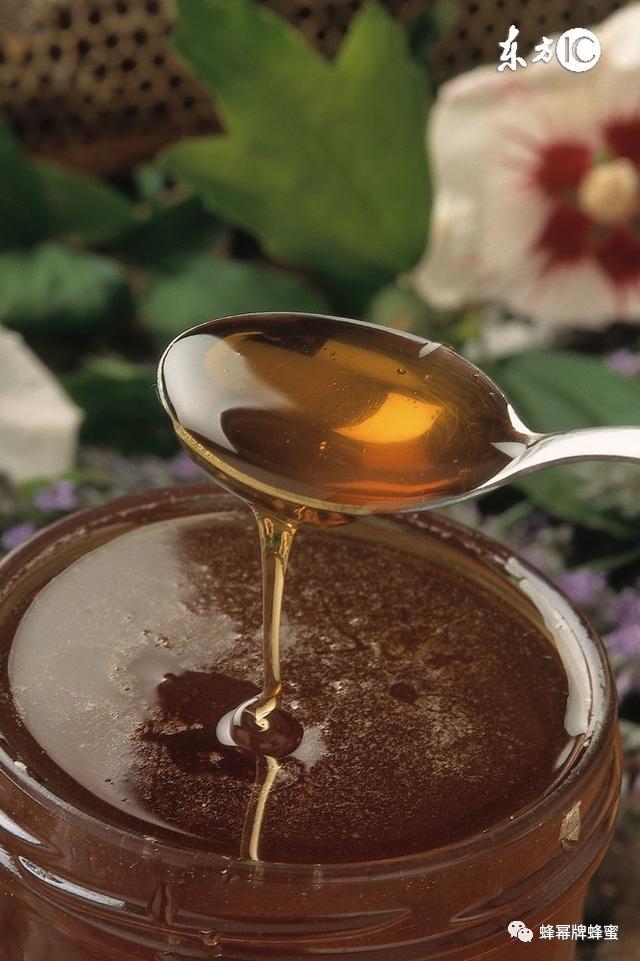 蜂蜜红酒面膜 蜂蜜幸运草 蜂蜜价钱 抗癌功效 红枣