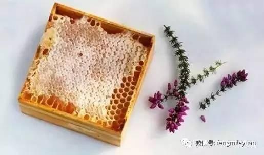 蜂蜜市场价 蜂蜜切片红参 蜂蜜怎样吃最好 蜂群 牛奶蜂蜜饮