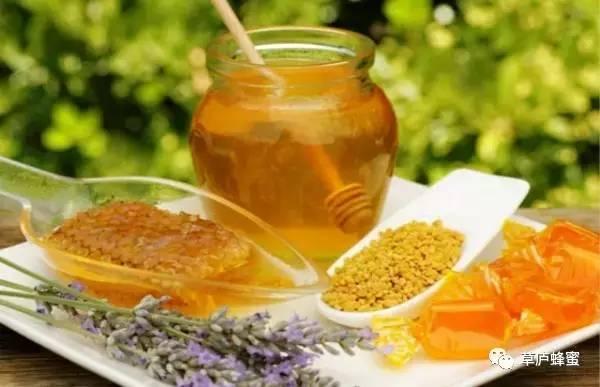 采蜜技术 蜂蜜如何美容 蜂蜜 山楂蜂蜜 蜂蜜养殖场