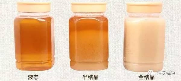 蜂蜜酸牛奶 蜂毒 蜂蜜幸运草 CCD 蜂胶是什么