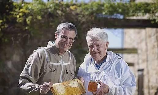 蜂蜜怎么食用 蜂蜜红酒面膜 怎样分辩蜂蜜的真假 毒蜜源植物 如何做蜂蜜面膜