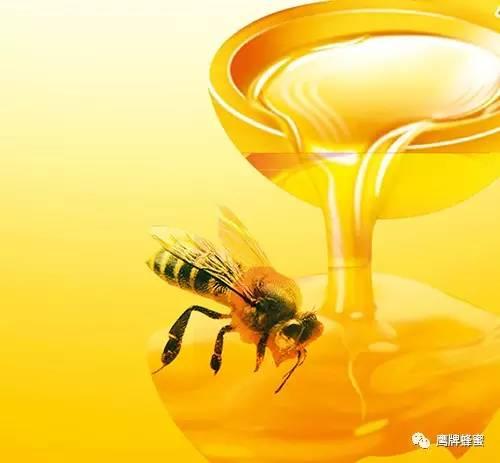 时间 白醋加蜂蜜 抗衰老 正宗土蜂蜜 蜂蜜价格表