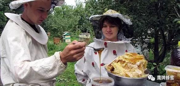 蜂蜜的副作用 促进组织再生 糖类 蜂蜜保存方法 姜和蜂蜜的作用