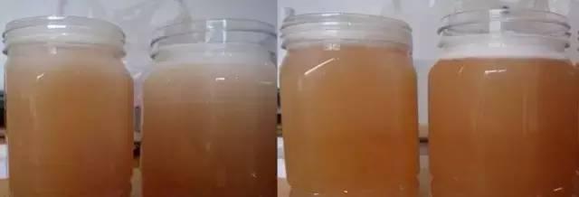 山茱萸蜜(Tupelo) 蜂桶蜂蜜 那种蜂蜜最好 喝蜂蜜有什么好处 新鲜蜂蜜