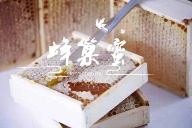 牛奶加蜂蜜 澳洲进口蜂蜜 蜂蜜瓶 脂肪酸 蜂蜜品种