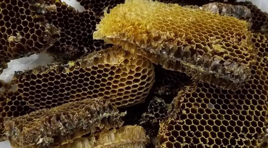 蜂蜜去皱纹 蜂蜜保质期 养蜂经济 无刺蜂经济价值 美白