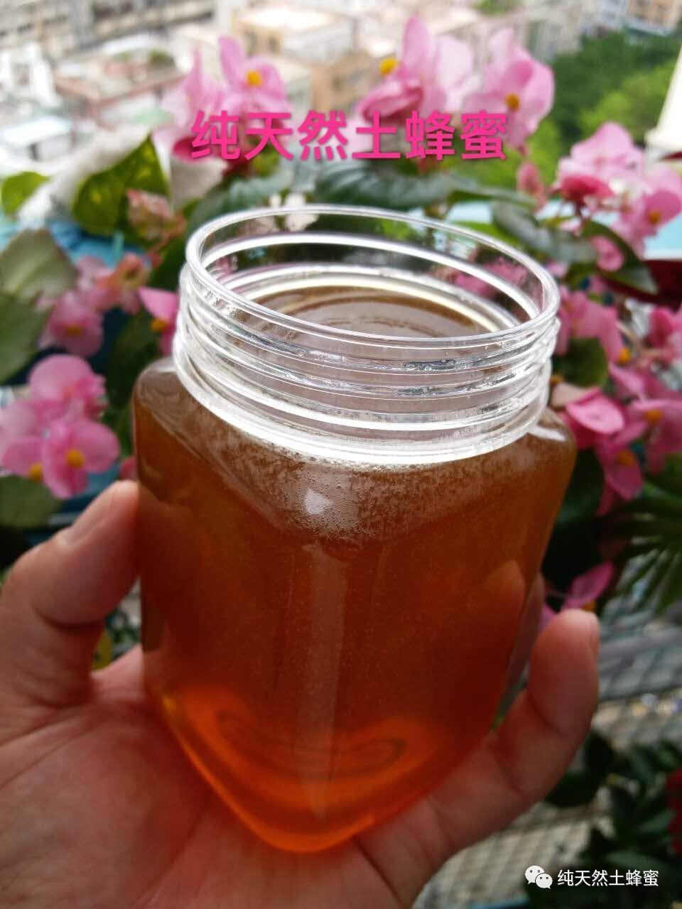意蜂蜂蜜 妙语蜂蜜价格 蜂品种 油菜花粉 牛奶蜂蜜