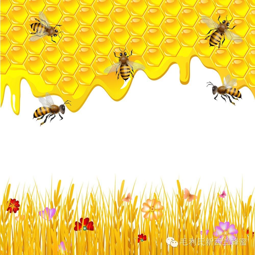 女人是不能随便乱吃蜂蜜的!——史上最全蜂蜜食用法