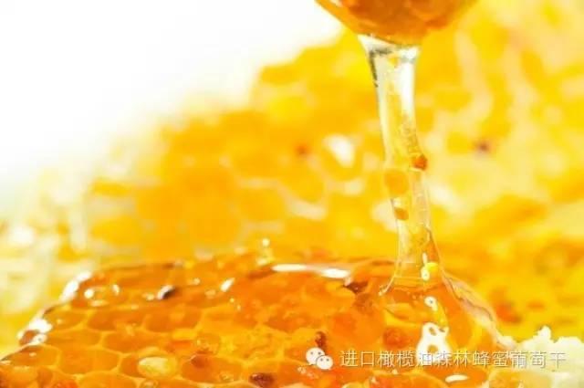 中华蜂蜜网 概念 方法 花外蜜 柠檬加蜂蜜