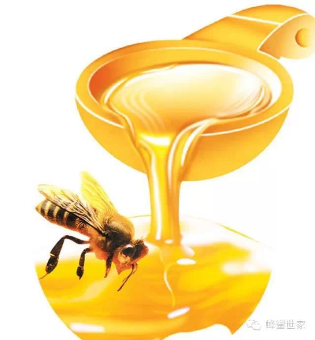 Honey) 如何销售蜂蜜 发展历程 蜂蜜专卖 蜜蜂病害防治
