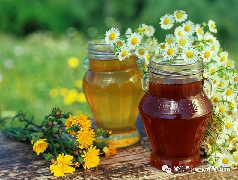 蜂王 蜂蜜可以淡斑吗 蜂蜜面霜 孕妇可以喝蜂蜜吗 蜂蜜的作用与功效