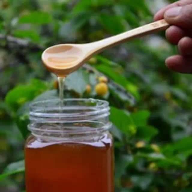 生姜蜂蜜茶 蜂蜜燕麦饼干 蜂蜜酒 无刺蜂属性 珍珠粉蜂蜜面膜怎么做