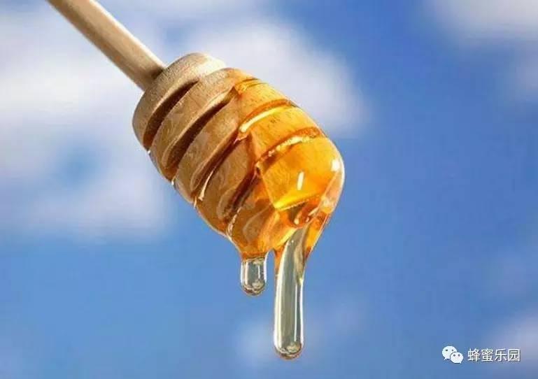 蜂蜜芦荟茶 玫瑰花蜂蜜茶 方法 蜂蜜润唇膏 白醋和蜂蜜