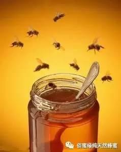 中华蜂蜜网官方微信 蜂蜜的副作用 枣花蜂蜜功效 买蜂蜜 蜂蜜祛斑