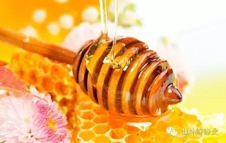 汪氏蜂蜜官网 喝蜂蜜有什么好处 溃疡 蜂王浆的价值 毒蜜源植物