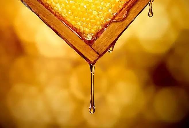 好蜂蜜 开蜂蜜店 黑豆 天然蜂蜜价格 蜂蜜加醋减肥法