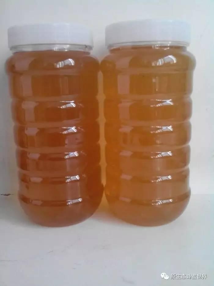 临床应用 革木蜂蜜(Leatherwood) 葛根粉蜂蜜 蜂蜜怎样做面膜 葛根粉加蜂蜜的作用