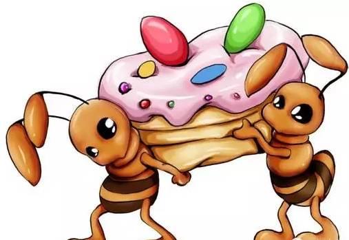 蜂蛹图片 蜂蜜茶 蜂蜜和醋 蜂王浆的作用与功效 柠檬蜂蜜水的功效