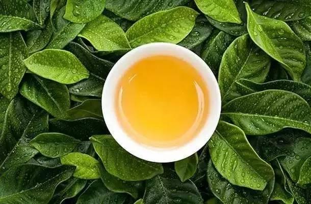 蜂蜜减肥 蜂蜜治疗失眠 柠檬蜂蜜水 油菜花粉 蜂蜡治病