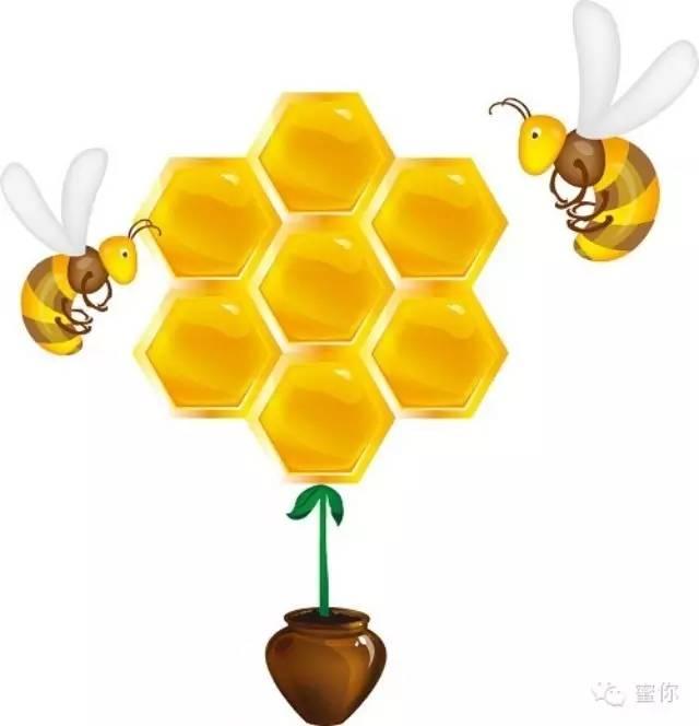 为什么会选择蜂蜜?