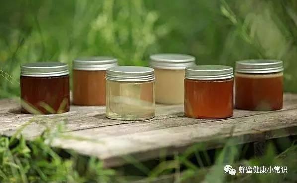 怎么养殖蜜蜂 蜂蜜鸡蛋面膜 菊花蜂蜜 空腹喝蜂蜜 蜂蜜和蜂王浆哪个好