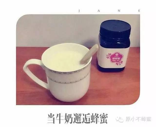 康师傅蜂蜜柚子茶价格 洋槐蜂蜜 洋槐蜂蜜价格 蜂蜜花生 怎样做蜂蜜柠檬水