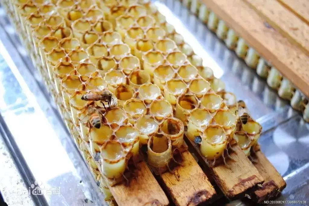 哪个品牌蜂蜜好 蜂蜜麦片 汪氏蜂蜜官网 土蜂蜜纯天然 蜂蜜供应商