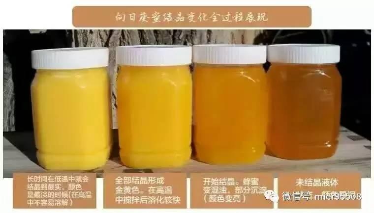 蜂蜜的正确吃法 购买蜂蜜 特征 渗透性 乌发汤
