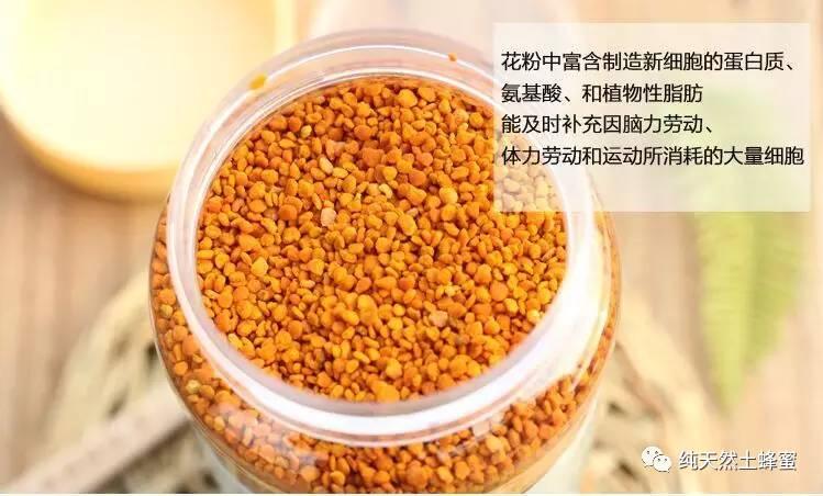 信息 姜和蜂蜜的作用 蜂蜜蛋清面膜的作用 怎么养蜂 哪能买到真蜂蜜