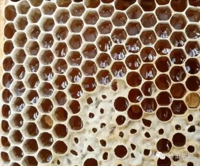 蜂蜜加盟 纯天然的蜂蜜 白醋蜂蜜 牛奶蜂蜜面膜 怎样用蜂蜜美白