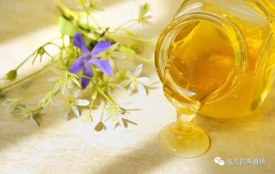 蜂王 蜂蜜品牌 南瓜蜂蜜蛋糕 蜂蜜的作用与功效 蜂蜜进口关税