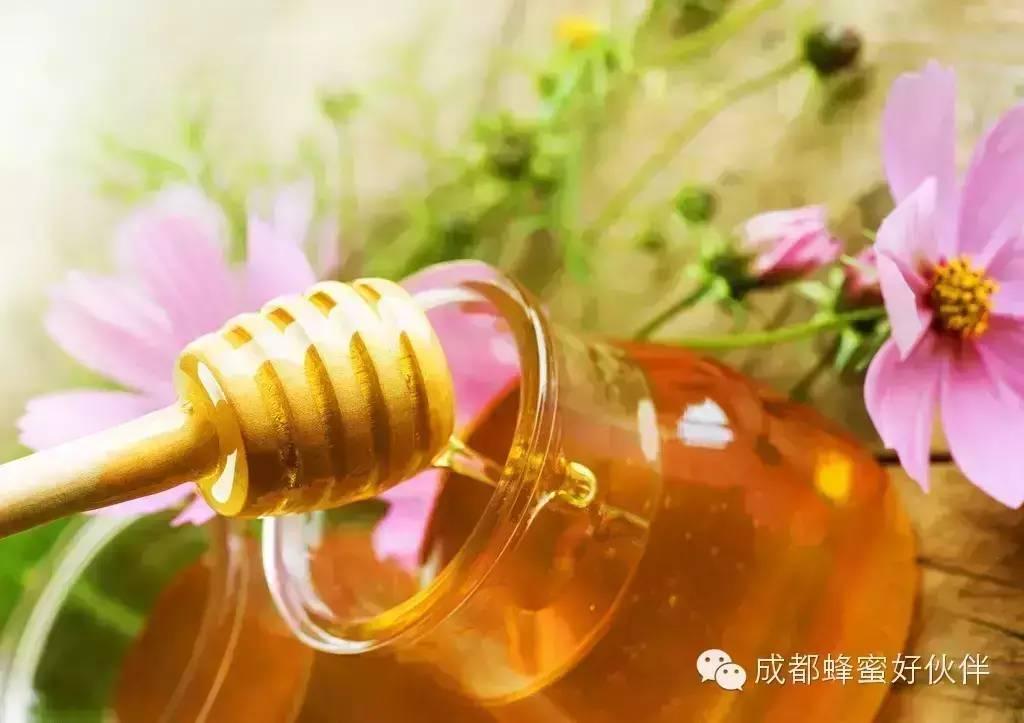蜂蜜加醋喝 胃炎可以喝蜂蜜吗? 蜂蜜水早上空腹喝好吗 怎么辨别好的蜂蜜 蜂蜜三七