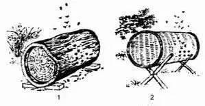 原浆蜂蜜怎么吃 柠檬片泡蜂蜜 婴儿蜂蜜便秘 柠檬蜂蜜茉莉茶 蜂蜜与痔疮